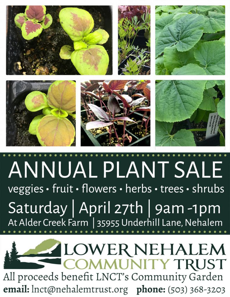 Annual Plant Sale – Lower Nehalem Community Trust