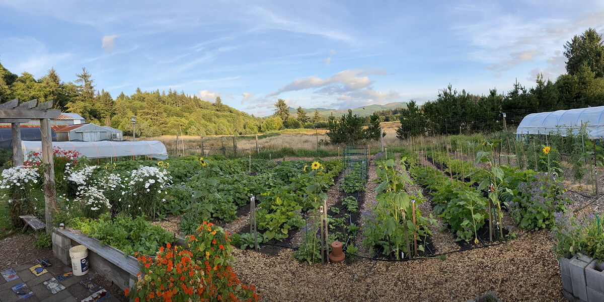 LNCT is seeking applicants for Community Garden Manager